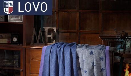 Как компания «Лово» развила достигнутый ошеломительный успех? (Часть 2)
