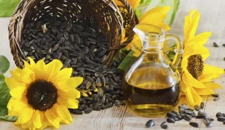 Как продать растительное (подсолнечное) масло в Китай