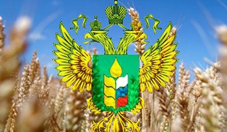 В Минсельхозе России обсудили возможности расширения инвестиционного взаимодействия с КНР в аграрной сфере