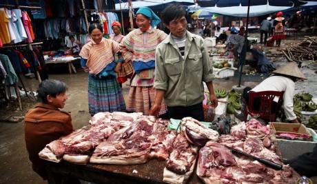 Разрушители легенд по-китайски. Экспорт какого мяса выгоднее?